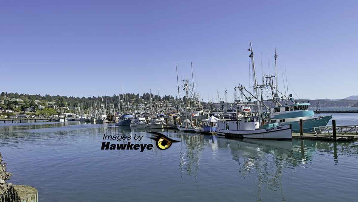 Fisherman's Wharf at Newport Beach, Oregon, near Whalers Rest Thousand Trails.