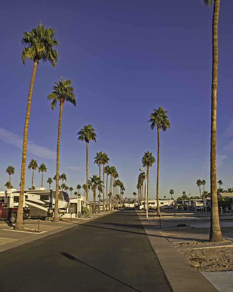 Spacious sites at Mesa Spirit RV Resort.