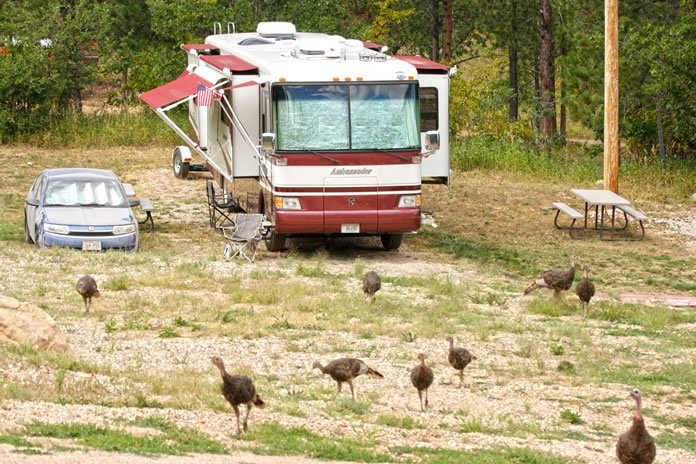 Our rustic site at Rush-No-More RV Park, Sturgis, South Dakota.
